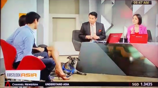 Channel News Asia: Positive reinforcement vs Traditional